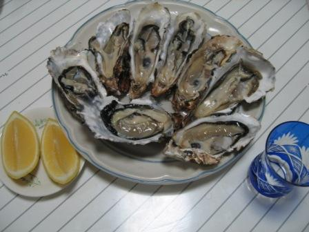 060312oyster2