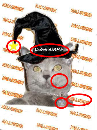 halloweencat5